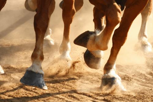 Horsepower-Strategies