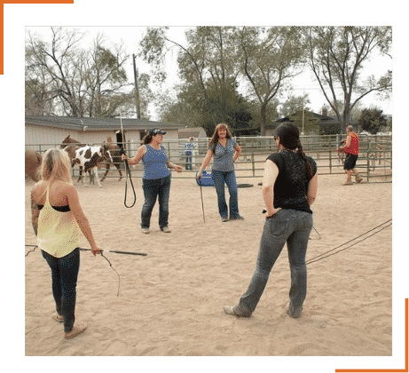 Horse-Power-Strategies-Training